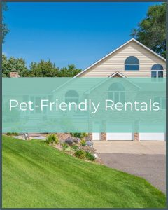 Pet-Friendly Vacation Rentals in the Minneapolis Area